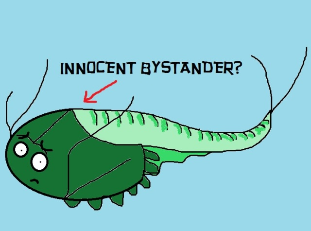 INNOCENT BYSTABDER